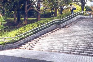 Emerica in Japan