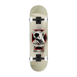 "Birdhouse Hawk Skull Foil 8.0"" Complete Skateboard"