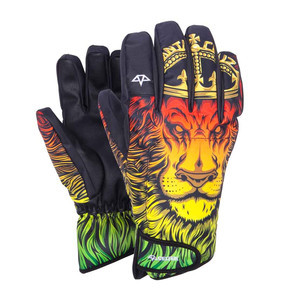 Celtek x Santa Cruz GORE-TEX El Nino Men's Snowboard Gloves - Lion God