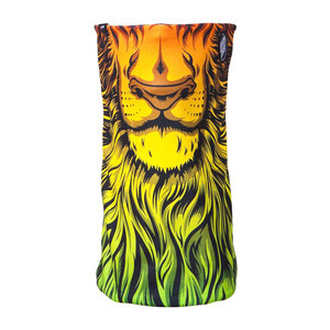 Celtek x Santa Cruz Meltdown Men's Facemask - Lion God