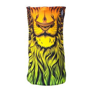 Celtek x Santa Cruz Meltdown Men's Facemask - Lion God