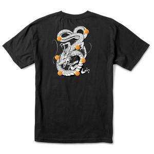 Primitive x Dragon Ball Z Shenron Nuevo T-Shirt - Black