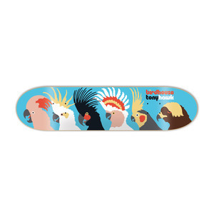 "Birdhouse Tony Hawk Birds 8.0"" Skateboard Deck"