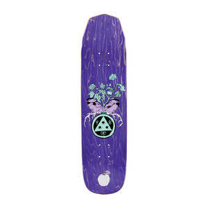 """Welcome Nora Fairy Tale on Wicked Princess 8.125"""" Skateboard Deck"""